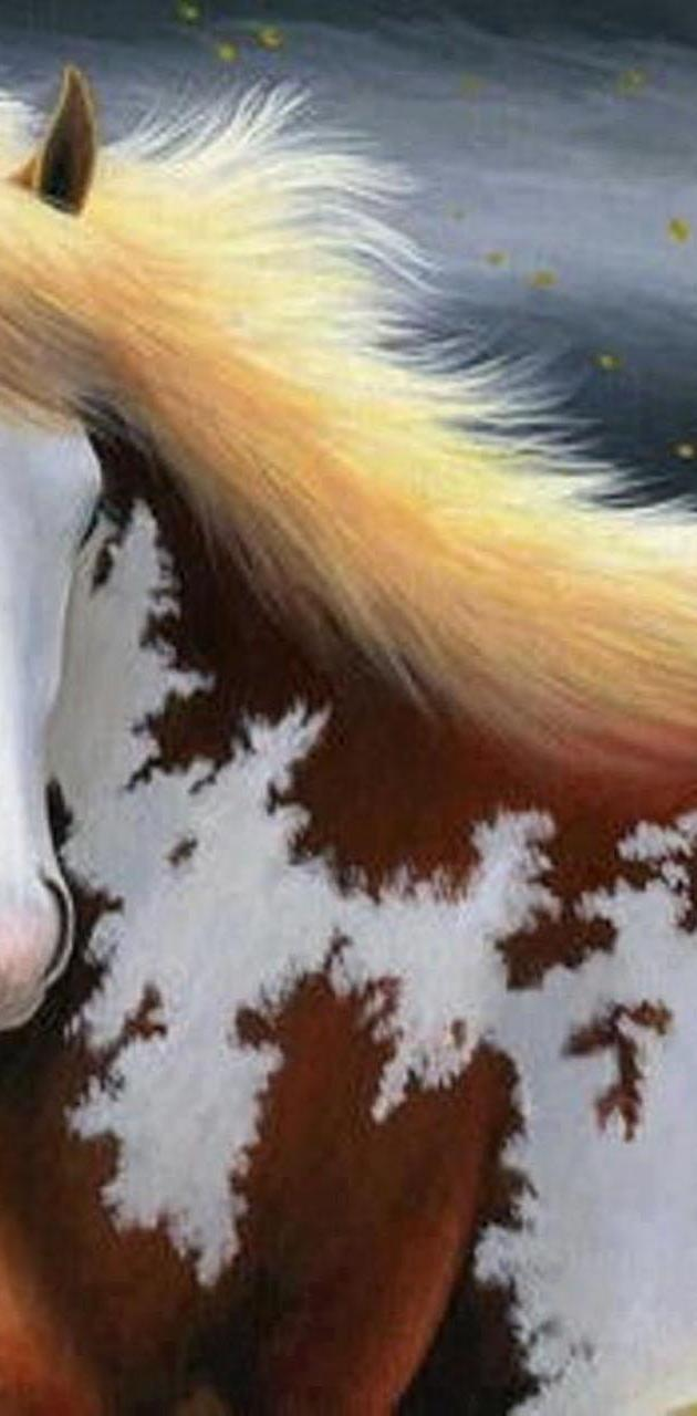 Horse Nice Wallpaper