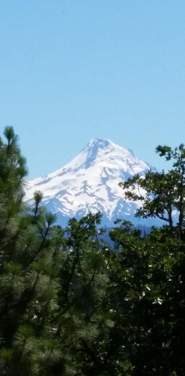 Snowy Mountain 1