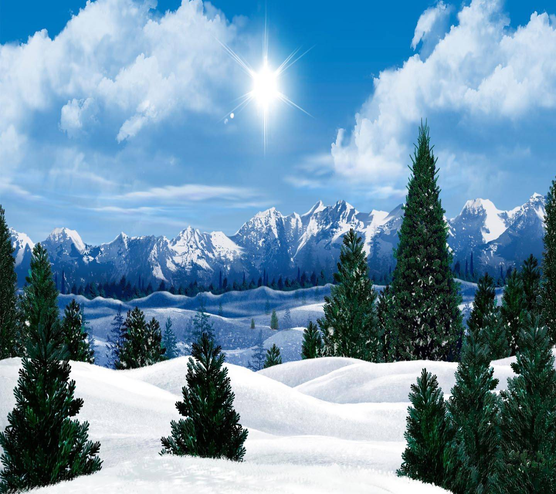 Winter Sun shining