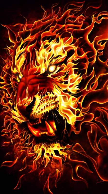 Fire Lion Wallpapers Free By Zedge