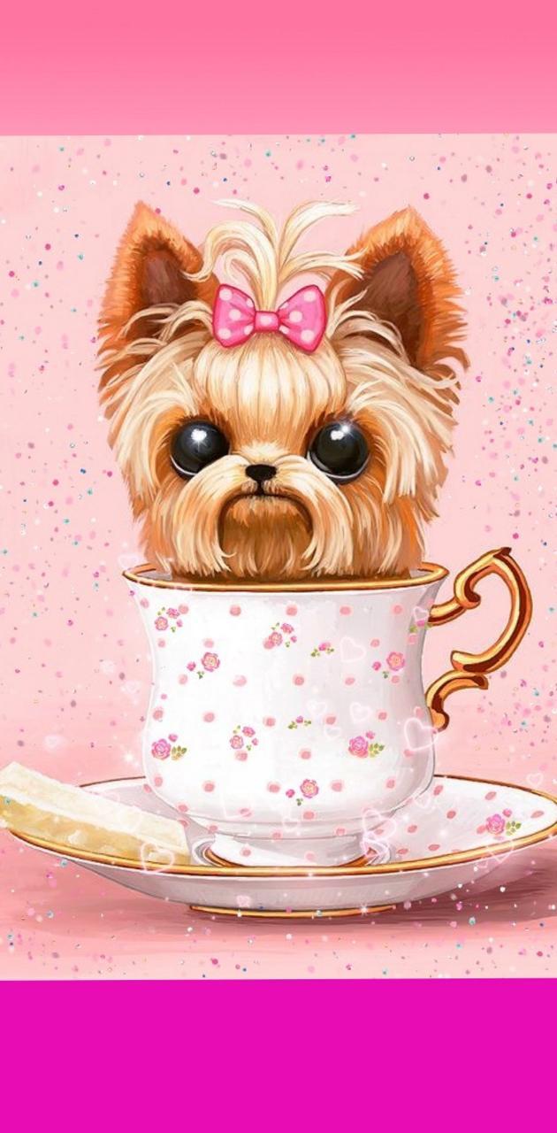 Yorkie dog teacup