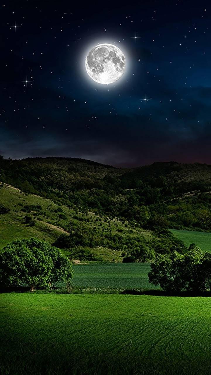 Nighttime HD