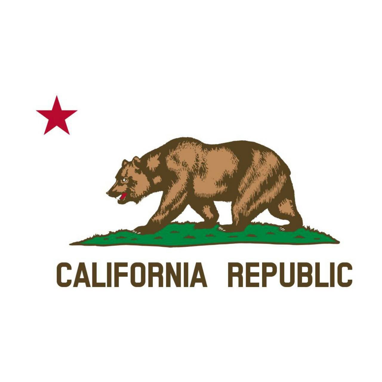 Californian Flag Wallpaper By Californian Camper 65 Free On Zedge