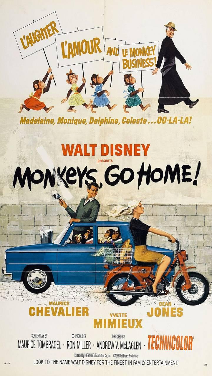Monkeys Go Home