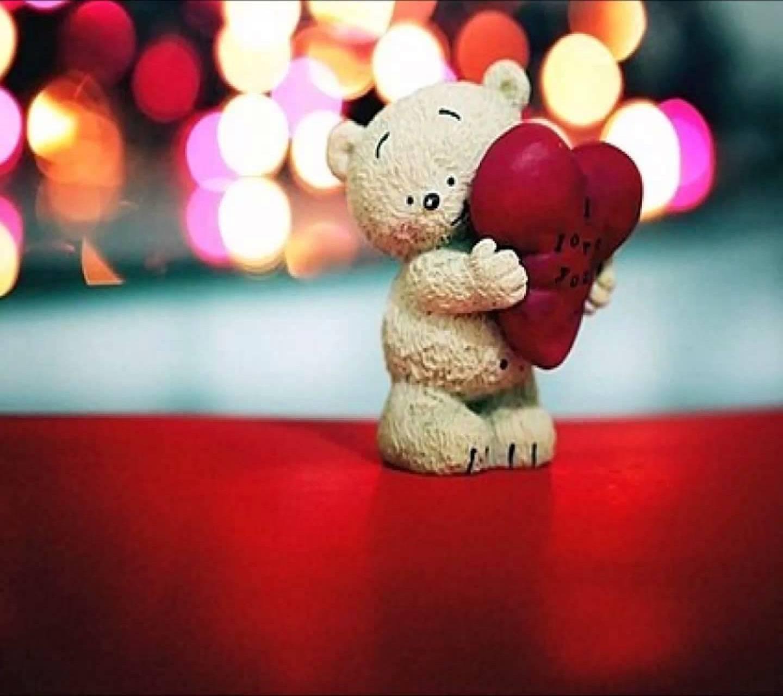 Cute Teddy Love