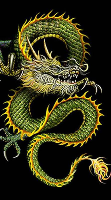 Chinese Dragon Wallpapers Free By Zedge