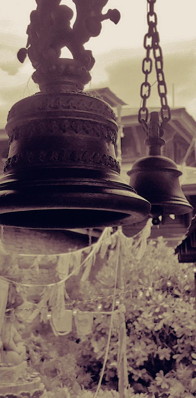 Weeping Bells