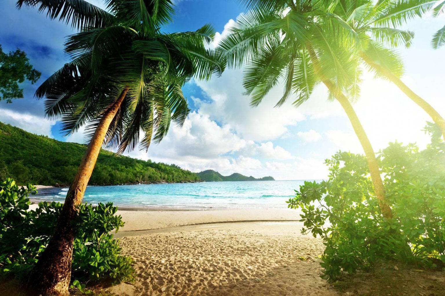 Island Nature