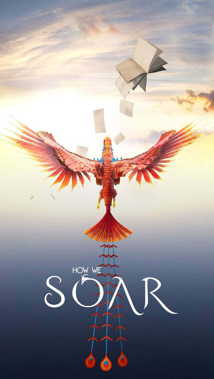 How We Soar PS4 Game