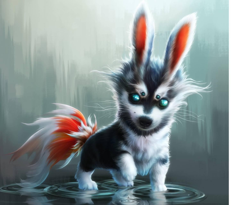 sweet funny animal