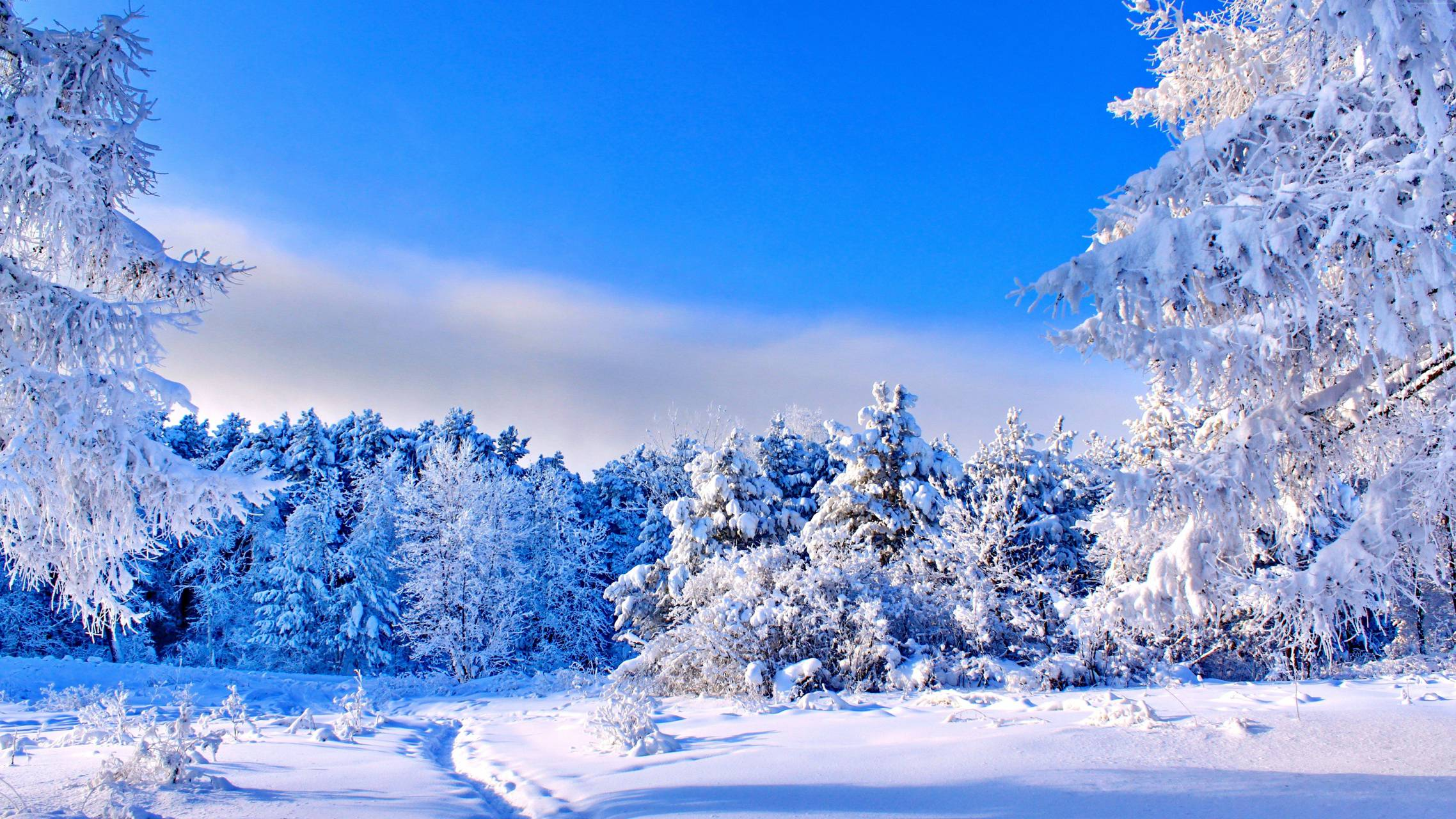 sky and snow