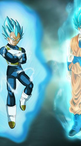 Goku Vegeta Gods