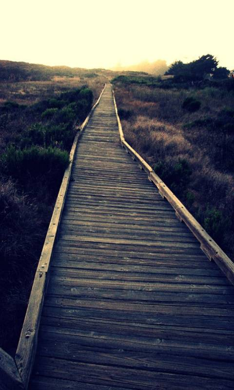 Path That Leads You