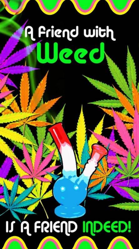 Legalize it neon