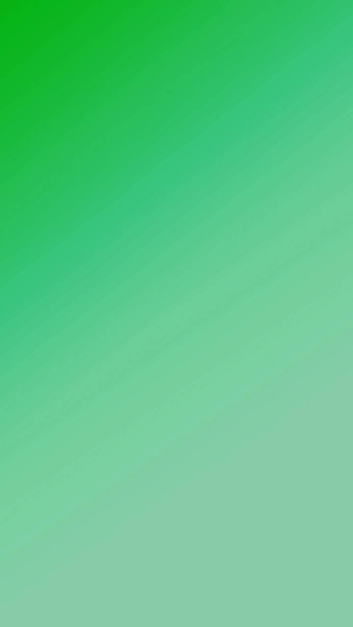 Green Display 1