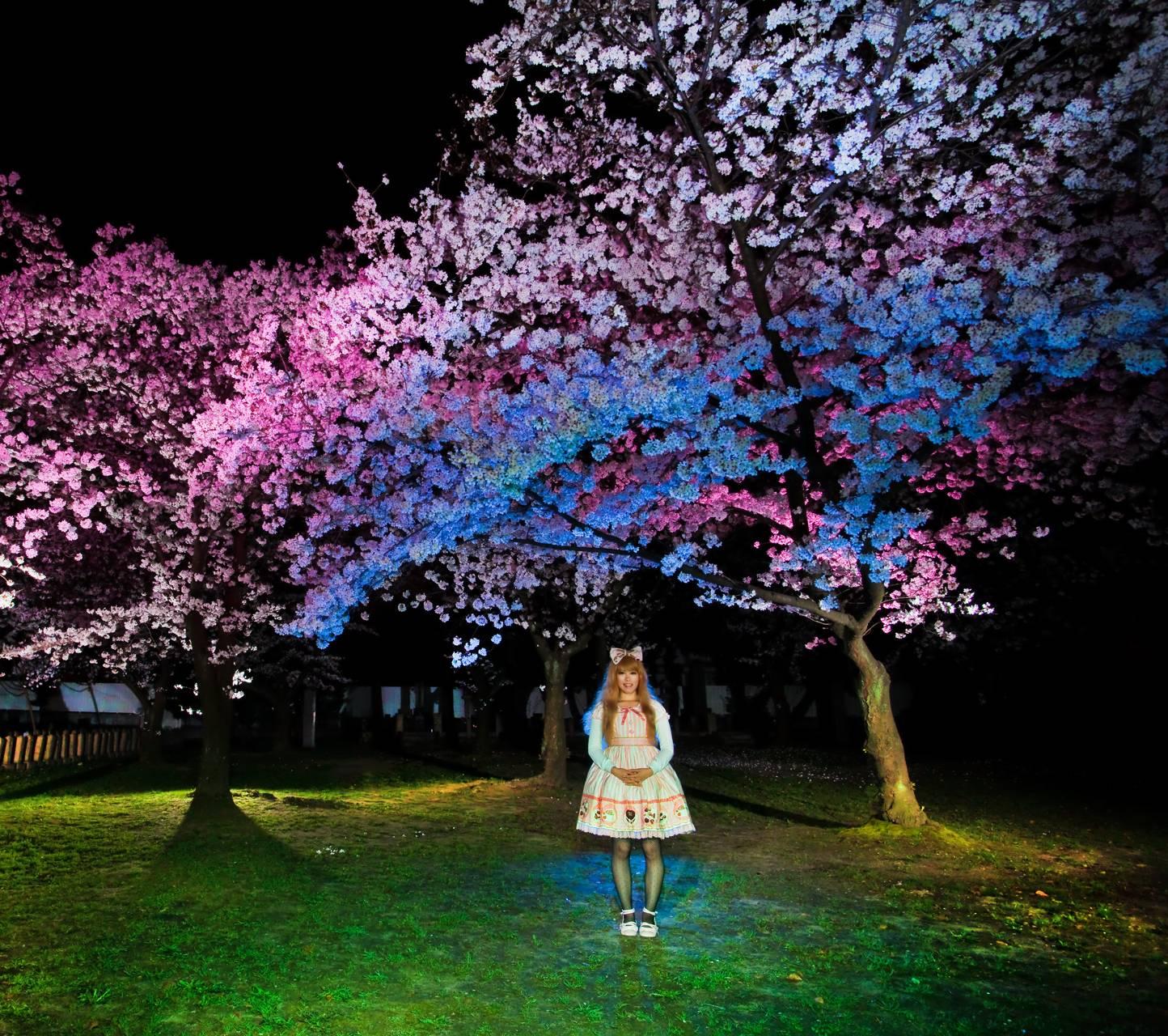 Lolita And Blossoms