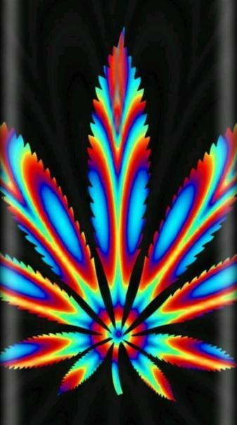 Trippy Plant