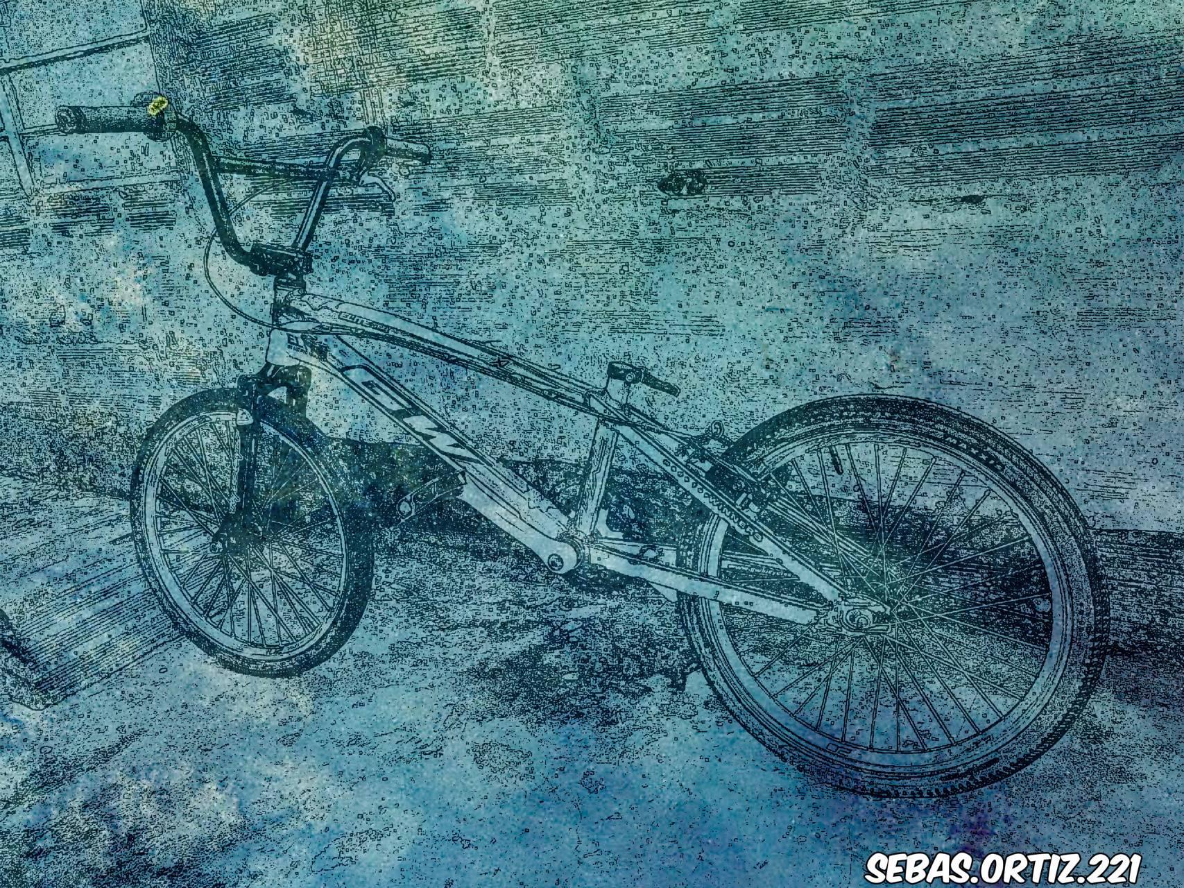 BMX gw elite