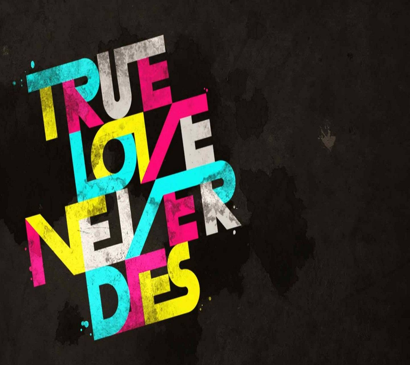 True Love Never Dies Wallpaper By Sonia F1 Free On Zedge