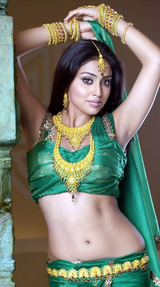 Shriya Hot Navel
