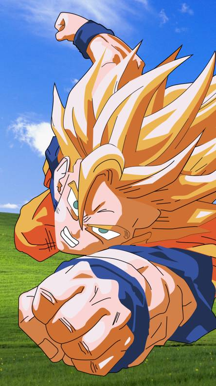 Windows Goku