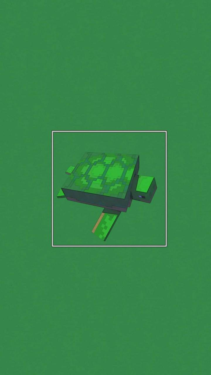 Minecraft tortuga