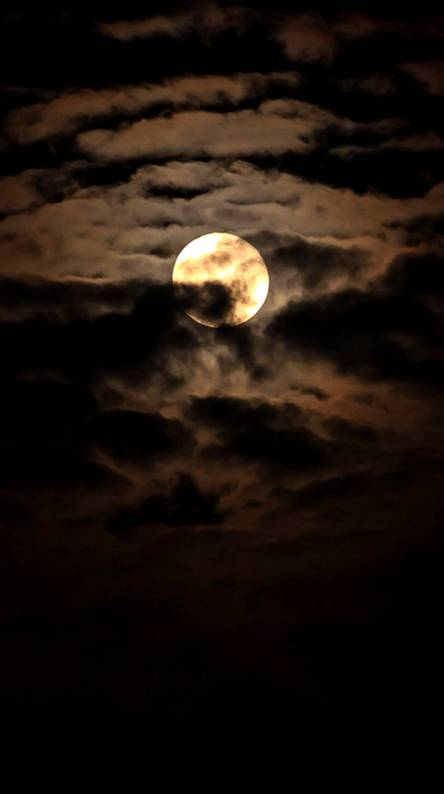 Dark Moonlight