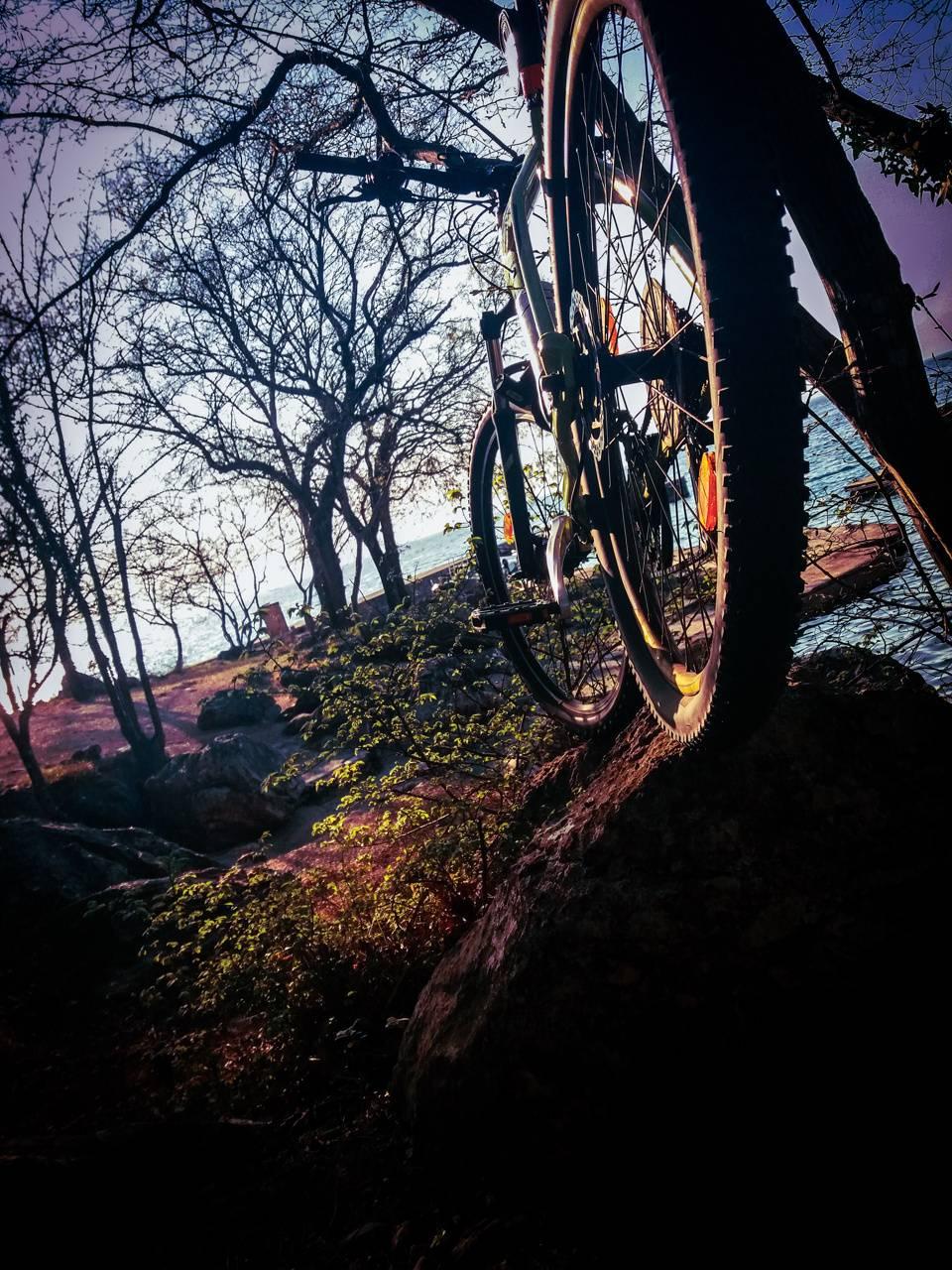 A wild mountain bike