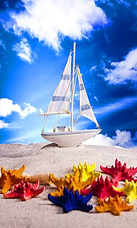 Boat And Starfishes