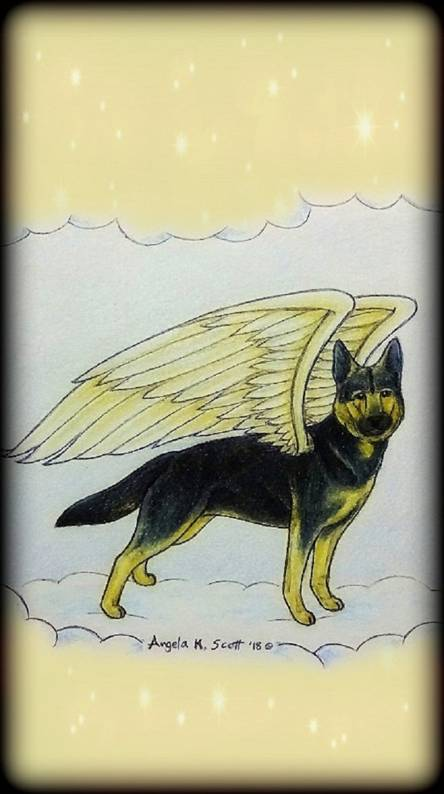 Shepherd Angel Dog