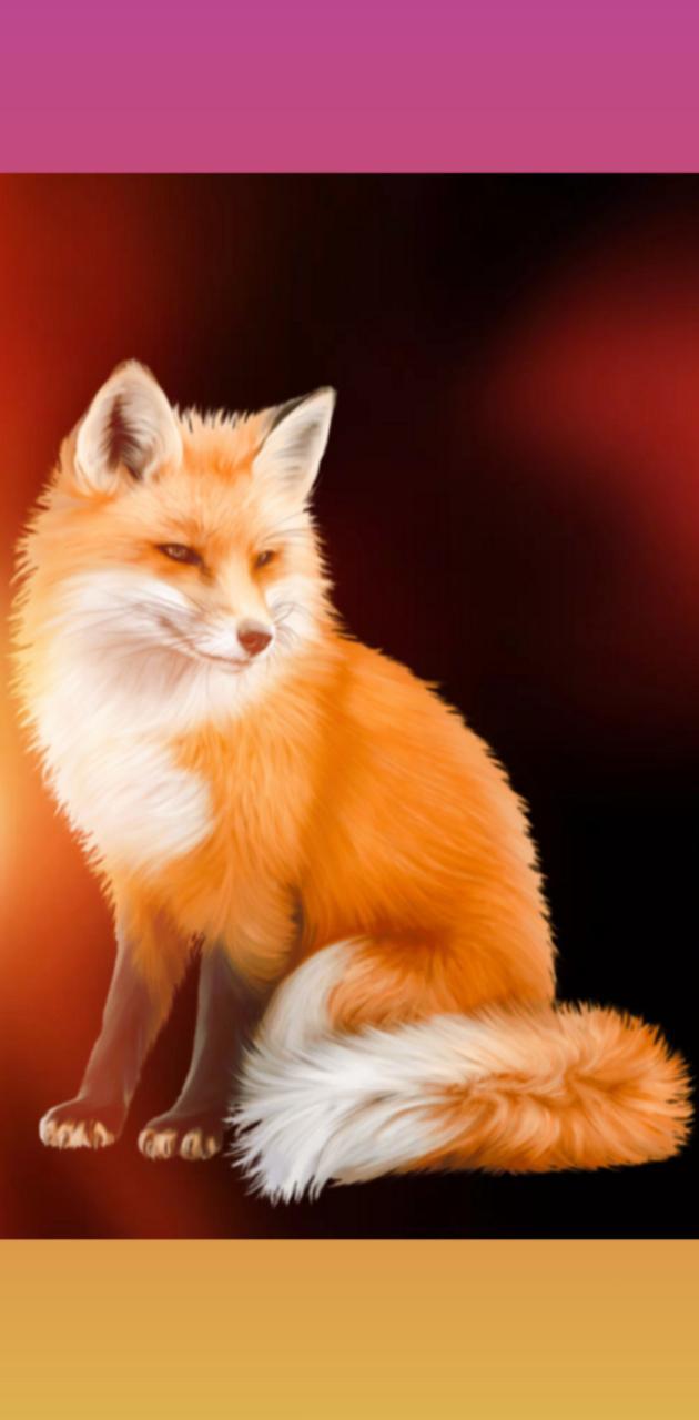 Fox Zorro