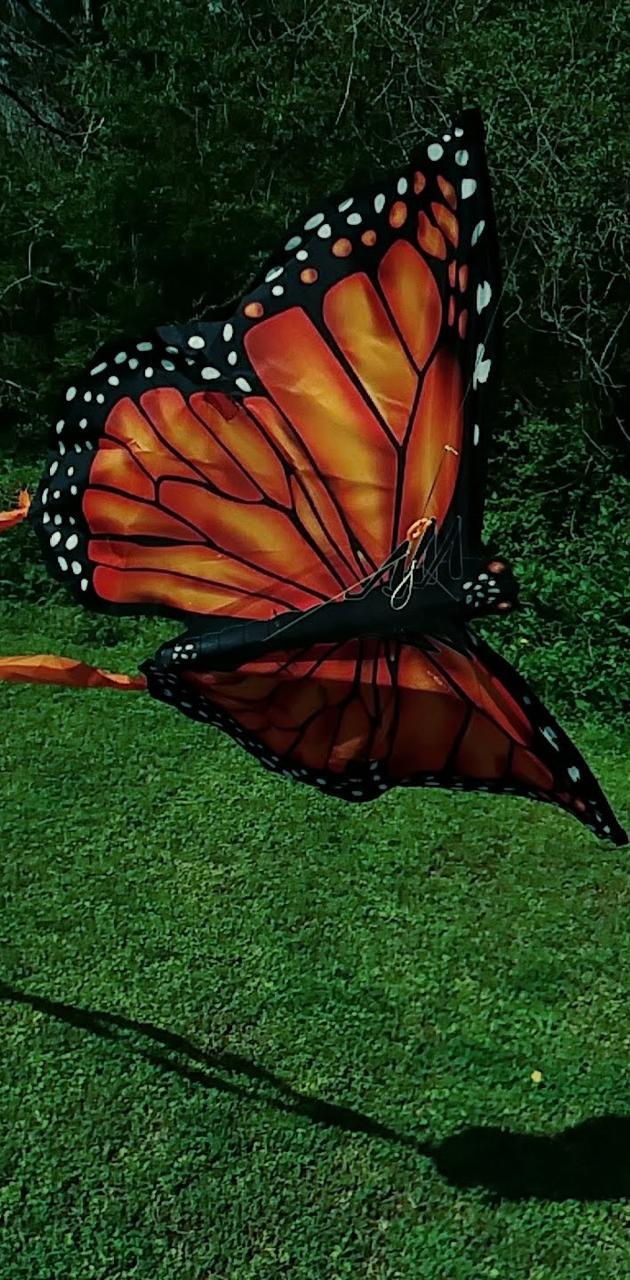 Wind butterfly