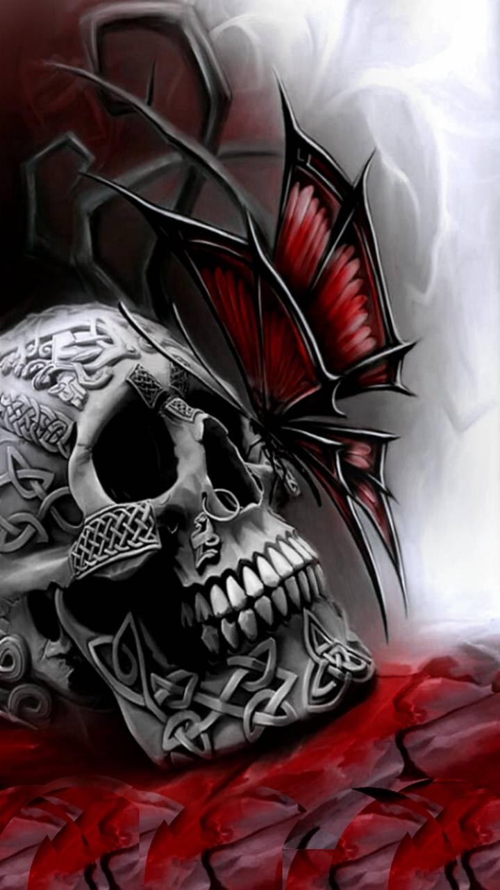 My skull