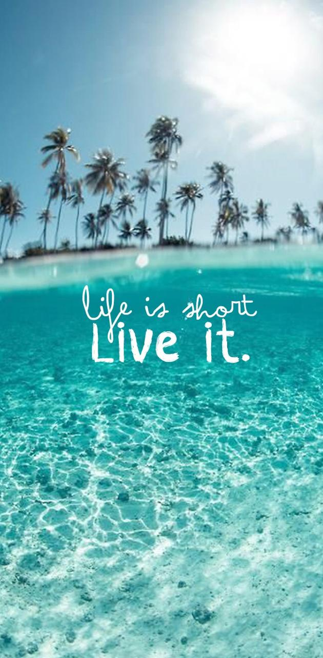 Life Is Short Live