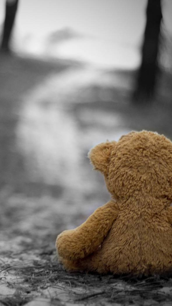 Sady Teddy