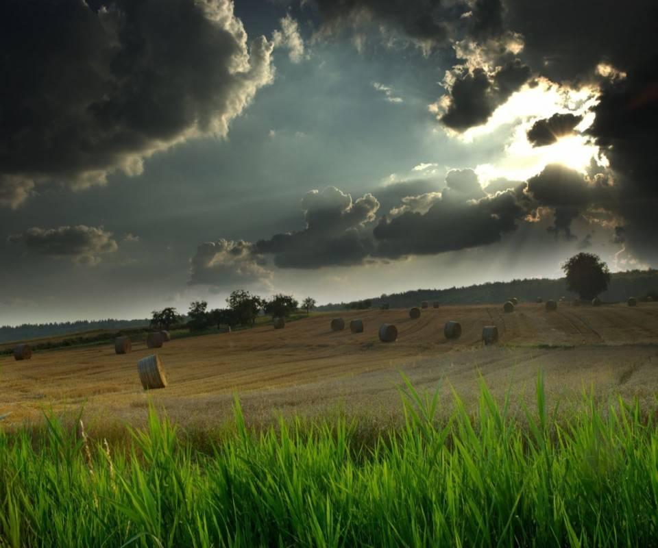 Landscape Hd72