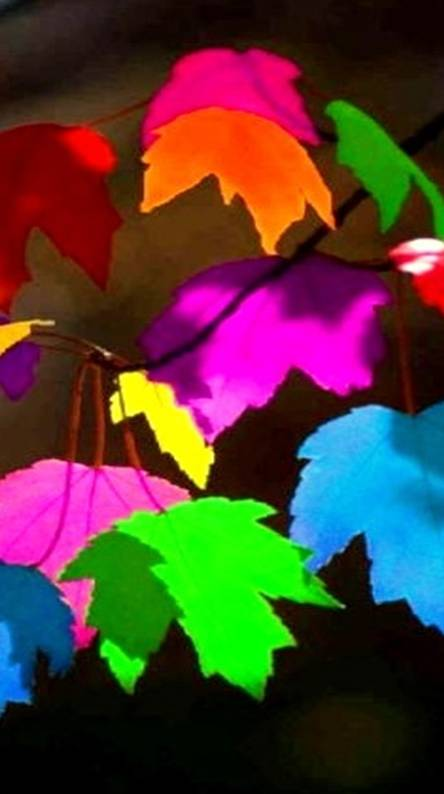 95 Colorful Leaf Wallpaper