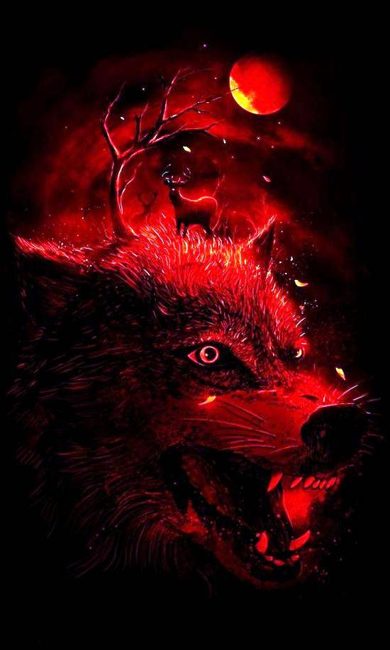 Red And Black Wolf Wallpaper