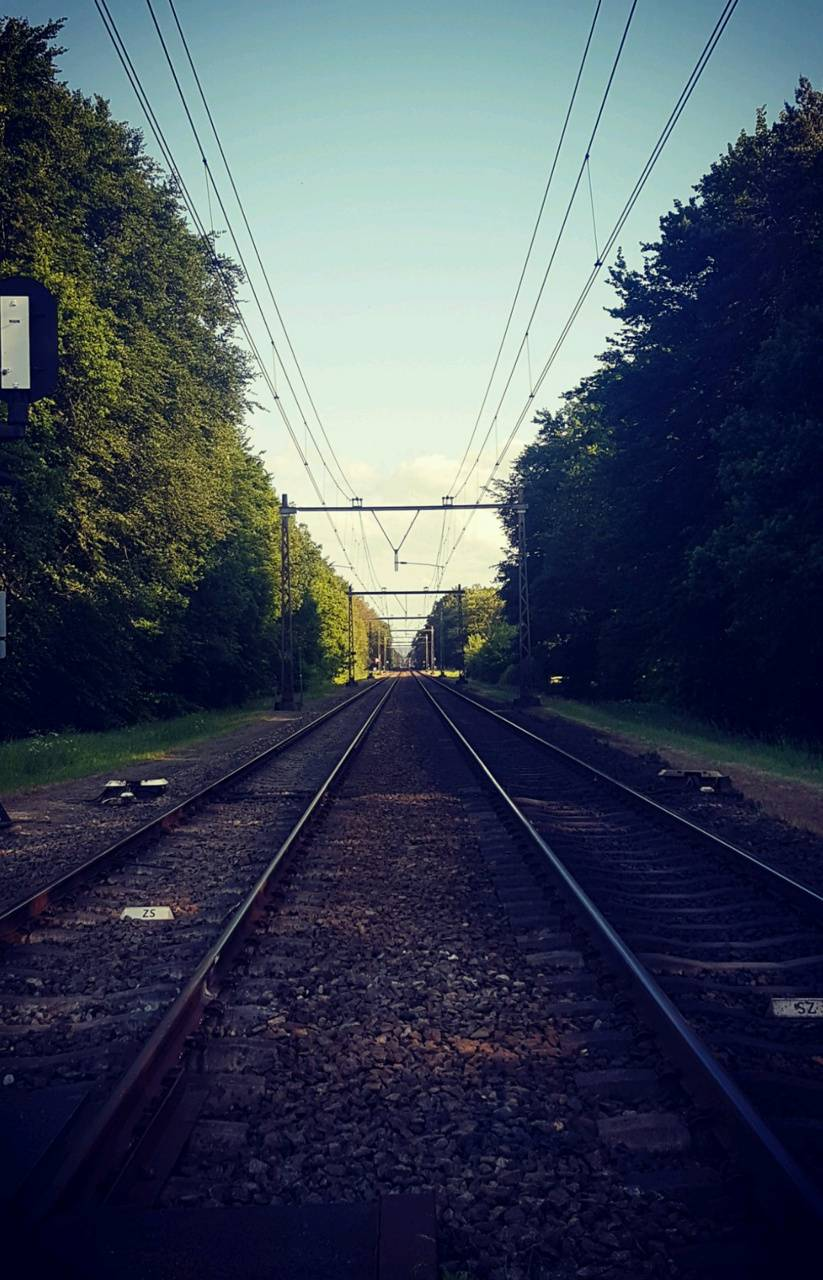 Rail Shadow