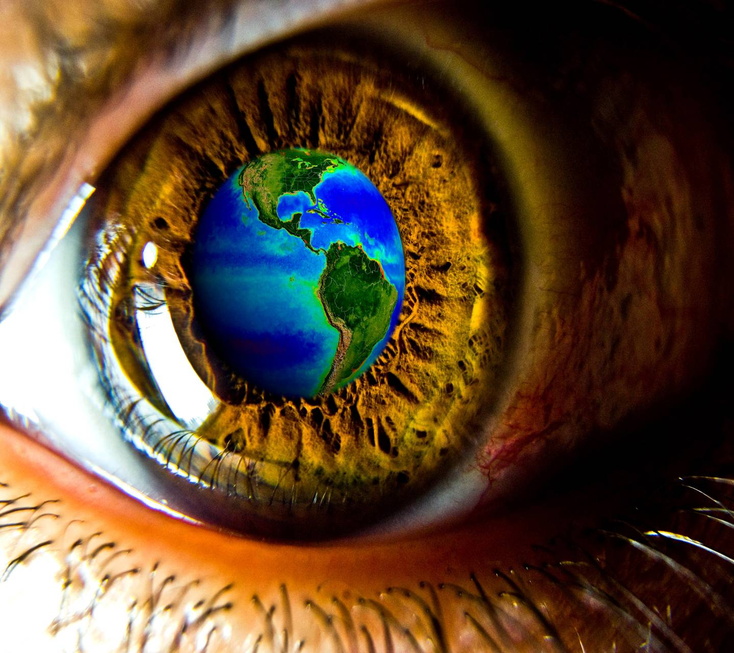 Eye On The Earth
