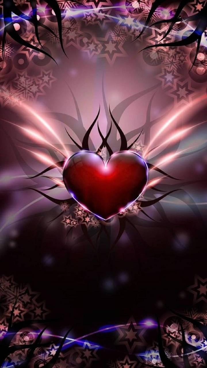 Spider heart