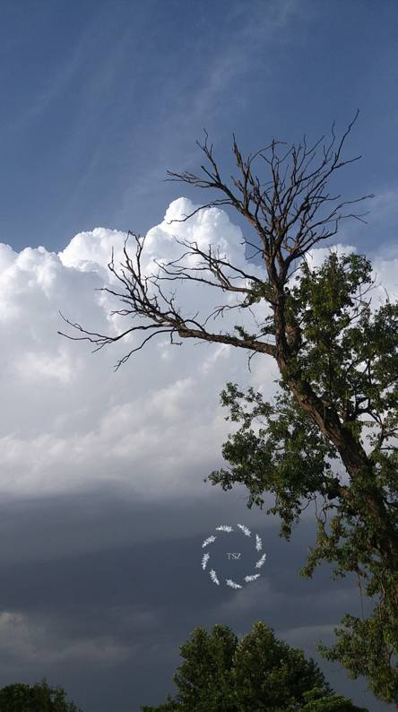 Cloud TSZ