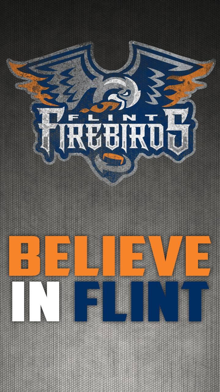 Flint Firebirds - 5
