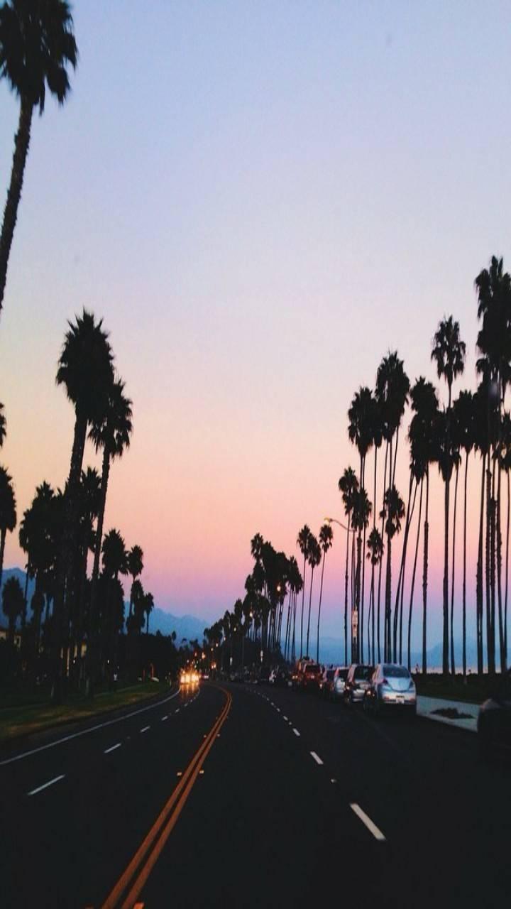 Night Time Cali