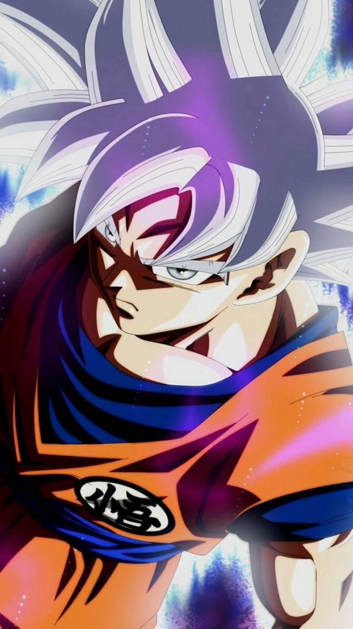 Goku Masterizado