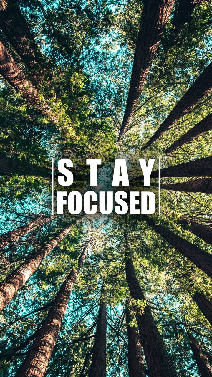 Stay Focused 10