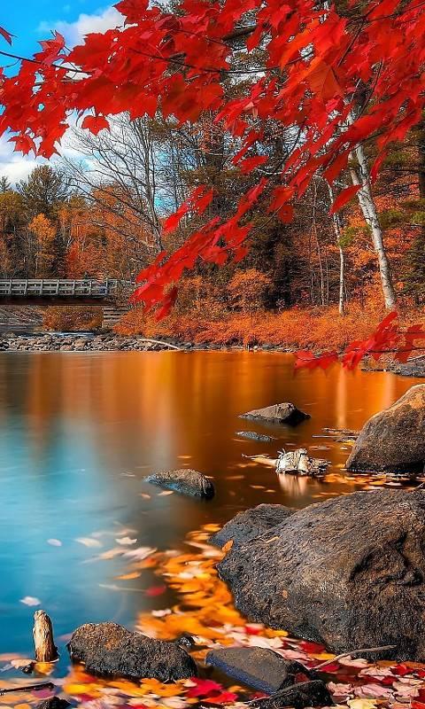 Autum River