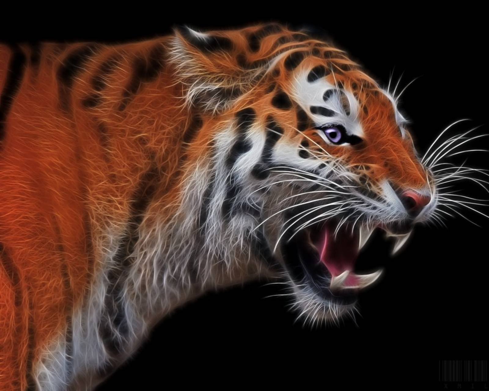Angry tiger fractal