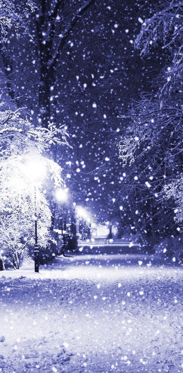 Snow Night