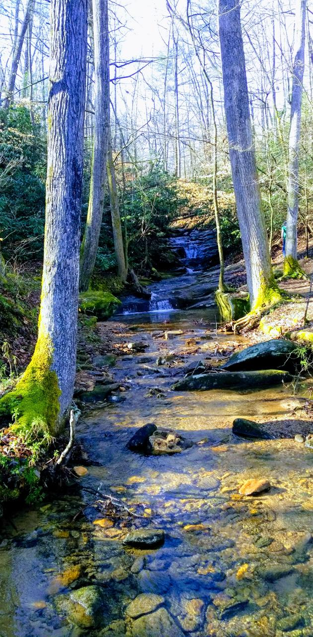Creek and Waterfall